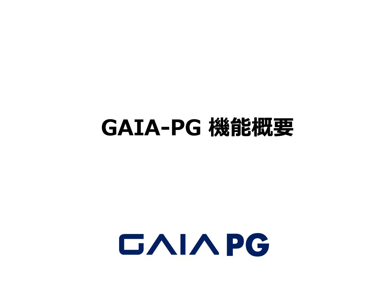 07-GAIAーPG機能概要20200507pptx