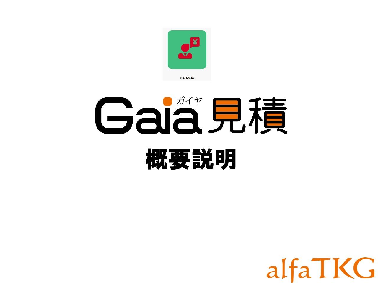 05-Gaia見積り概要_20200507